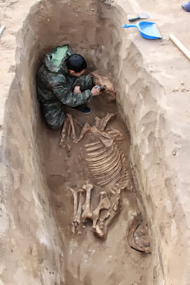 Ancient warrior's tomb discovered in Kazakhstan