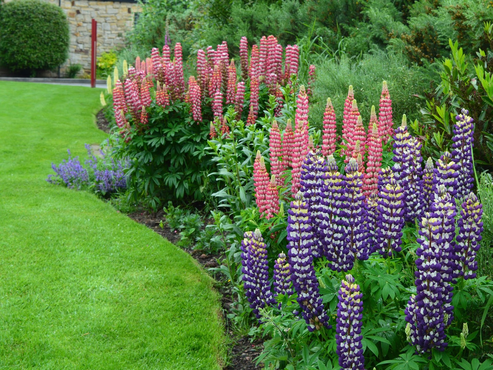 Overnight Stay at South Causey Inn | County Durham - Beer Garden Flowers