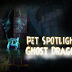Pet Spotlight: Ghost Dragon and a Bonus Opportunity