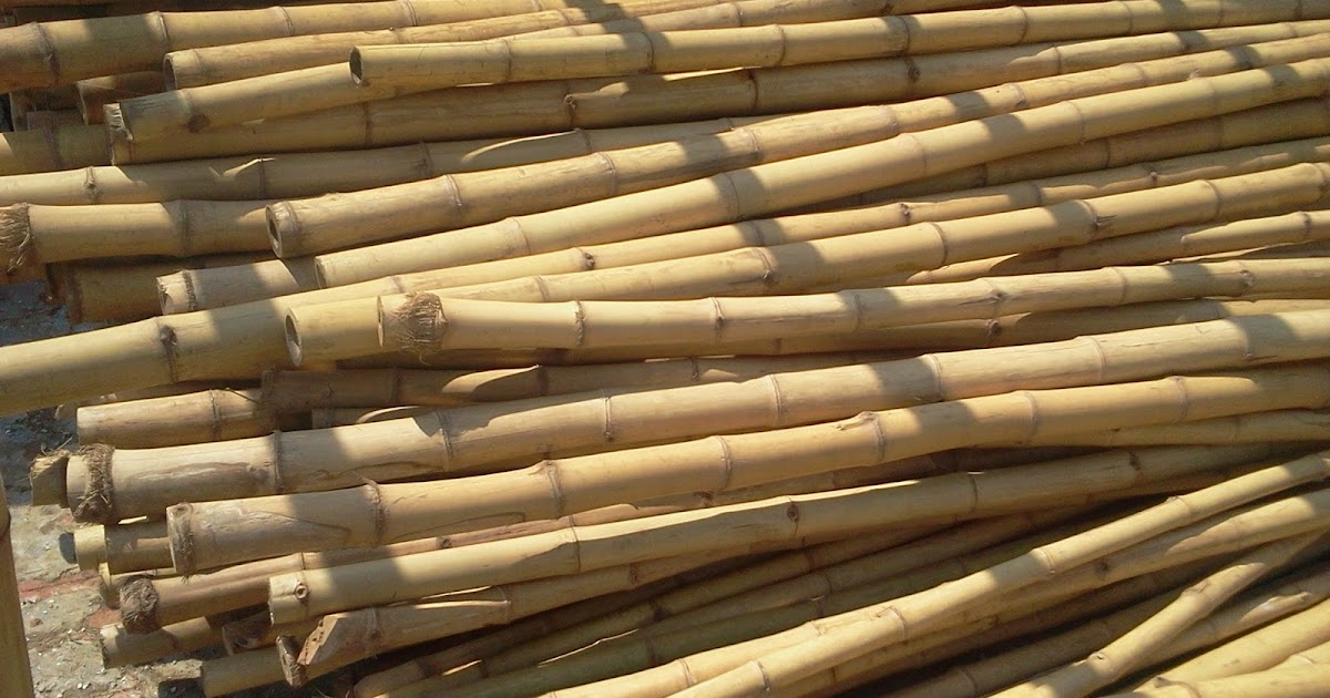 Quality Bamboo And Asian Thatch Bo Bamboo Pole 001