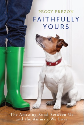 823bba7e94ce The Writer's Dog: Custom socks featuring your own pet!