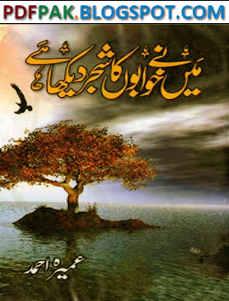 Me Ne Khawabon Ka Shajar Dekha Hai