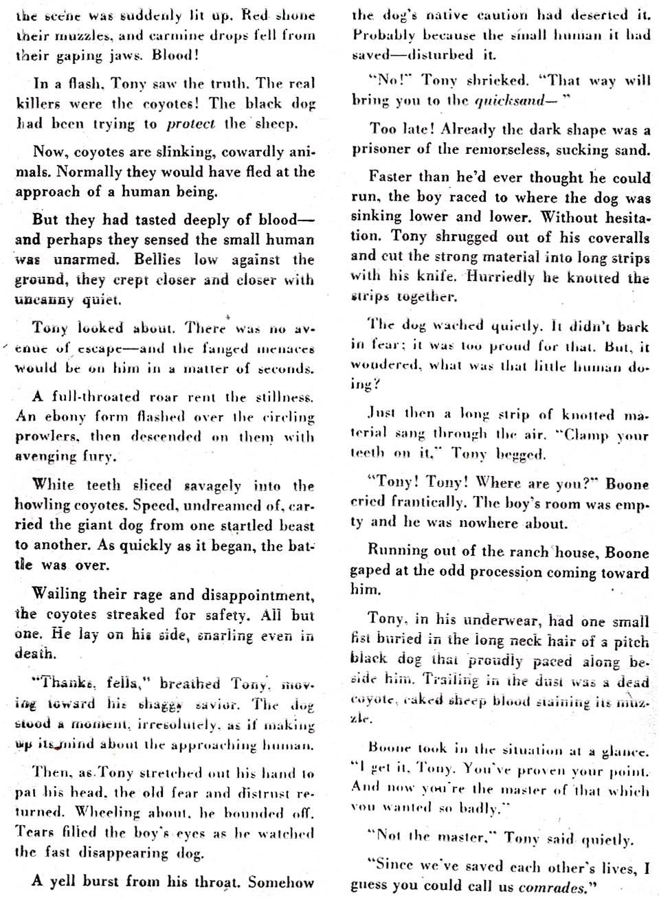 Read online All-American Comics (1939) comic -  Issue #91 - 42