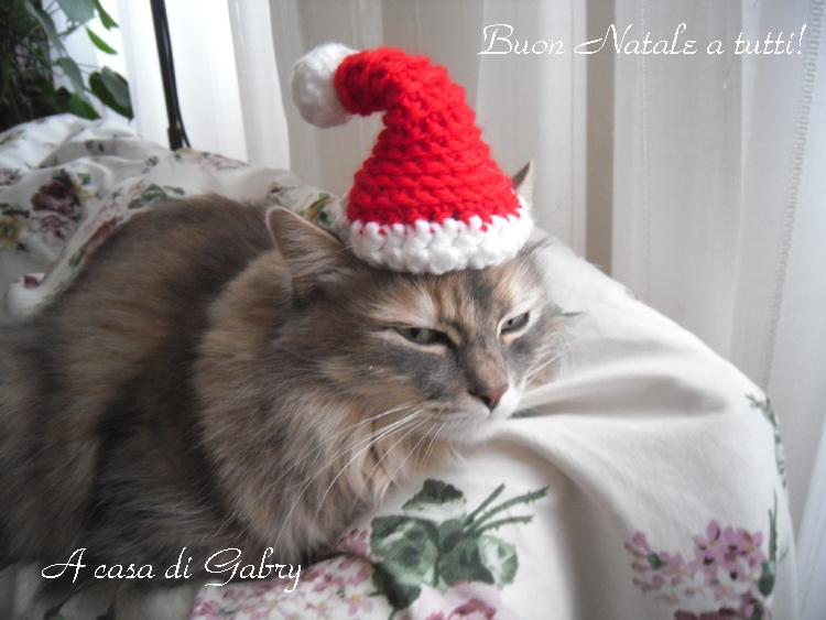 Ho visto questo adorabile mini cappello di Babbo Natale Qui sul blog 101  cose.it che trovo molto interessante. I tutorial sono chiari e spiegati  bene e mi ... 5018bd7ec91d