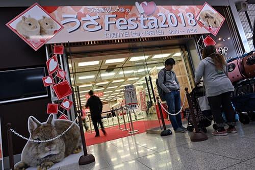 うさフェスタ2019 秋は11月23日、24日に横浜貿易ホールで開催!
