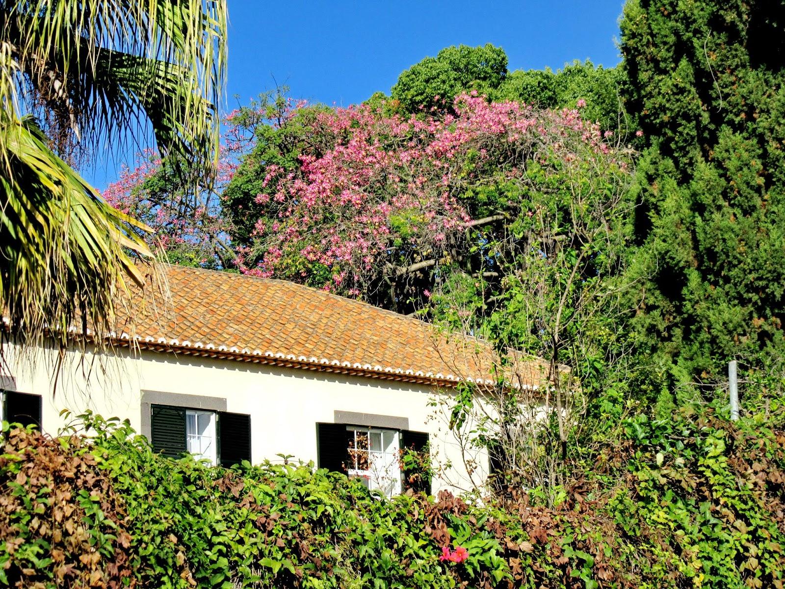 hotel Quinta de Bela Vista