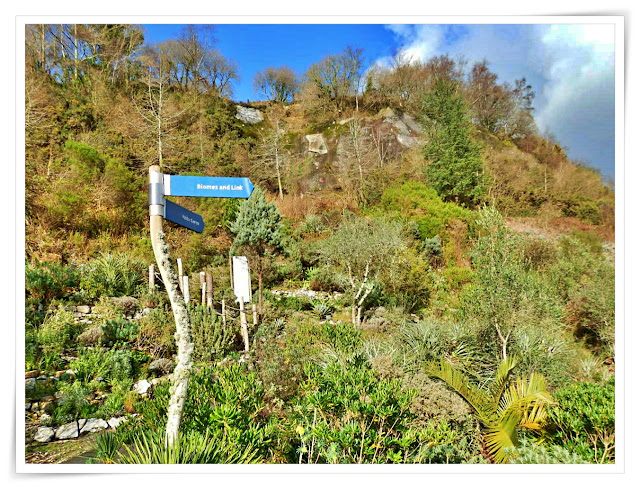Garden and signs at Eden Project, Cornwall