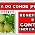 Benefícios da fruta do conde ou Pinha para saúde e contraindicações