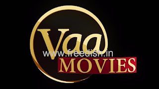 29th e-Auction completed, Vaa Movies and APN News won the slot