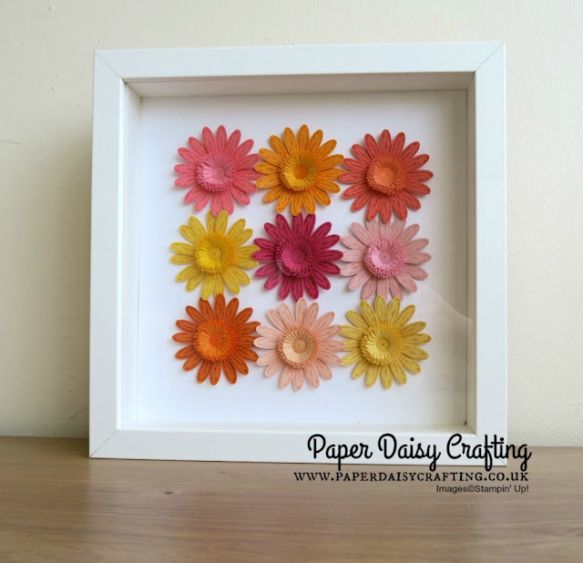 Daisy delight from Stampin Up with quilled flower centres