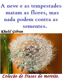 Coleção De Frases Em Geral Frases De Khalil Gibran