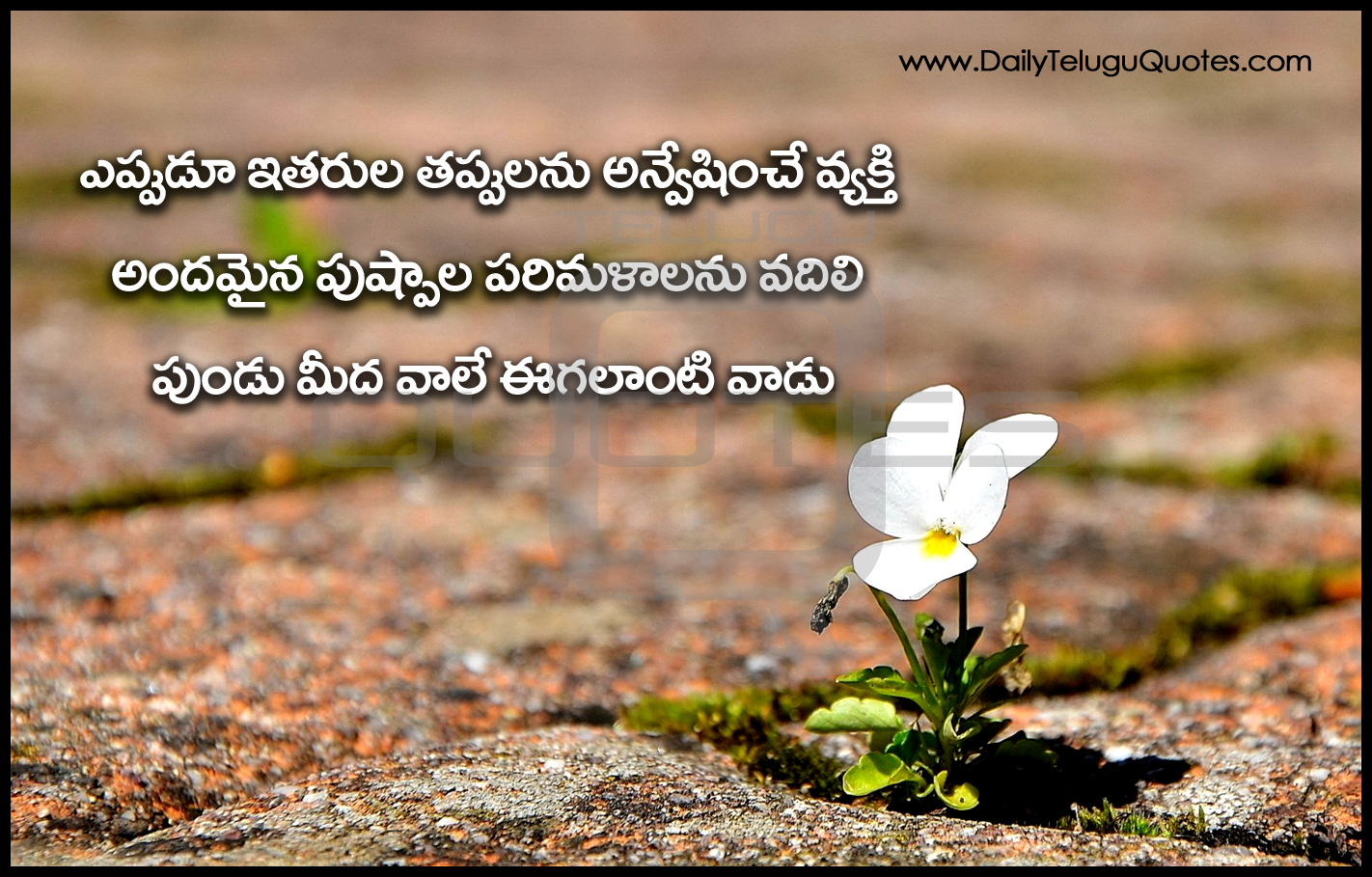 Best Telugu Quotes On Life Inspirational Thoughts And Sayings In