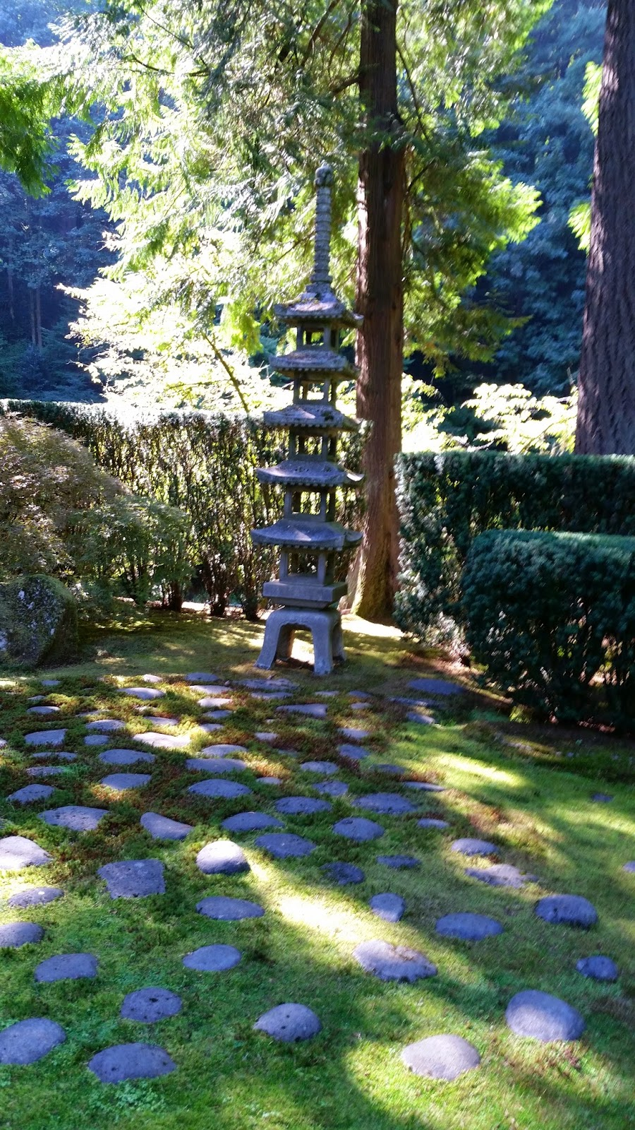 Portland Japanese Garden Store: Sprouts: Portland Japanese Garden