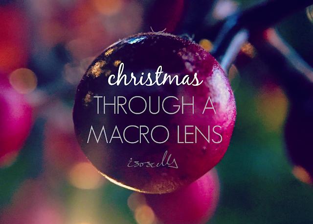 Christmas macro lens header