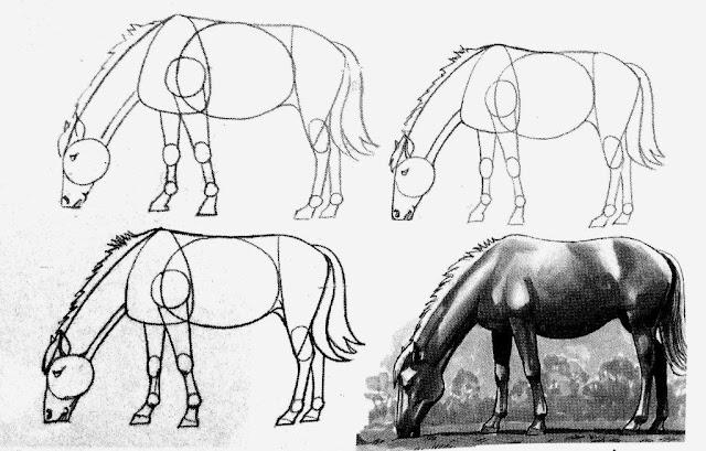cara-menggambar-kuda