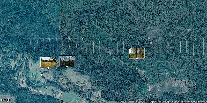 Спутниковая карта Налибокской пущи. Деревня Уса. Северная часть