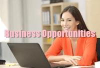 business opportunities online
