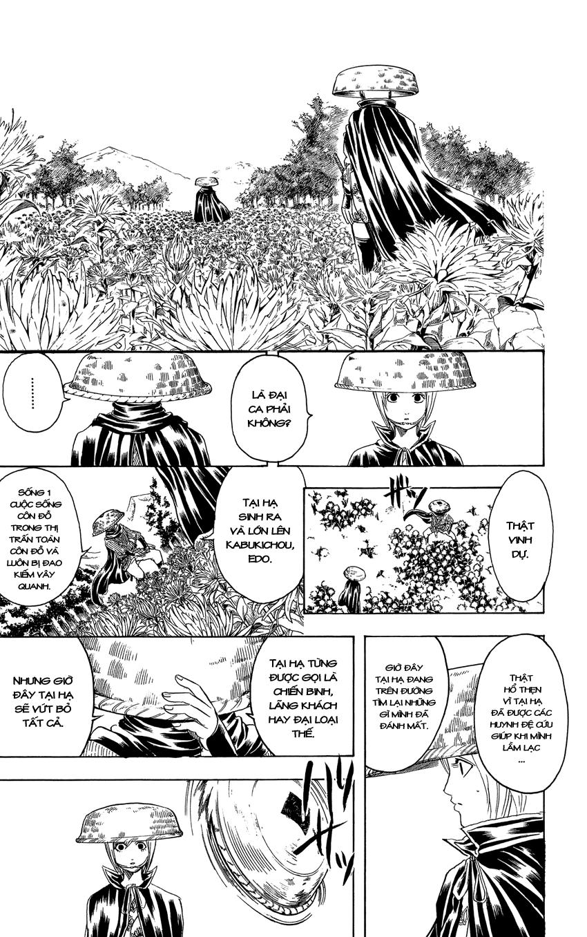 Gintama Chap 309 page 22 - Truyentranhaz.net