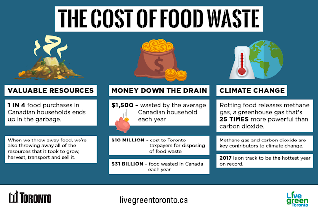 Valuable Resources: One in four food purchases in Canadian households ends up in the garbage. When we throw away food, we're also through away all of the resources that it took to grow, harvest and transport and sell it. Money down the drain: the average Canadian household wastes $1500 each year. $10 million is the cost to Toronto taxpayers for disposing of food waste. $31 billion worth of food is wasted in Canada each year. Climate change: rotting food releases methane gas, a greenhouse gas that is 25 times more powerful than carbon dioxide. Methane gas and carbon dioxide are key contributors to climate change. 2017 is on track to be the hottest year on record.