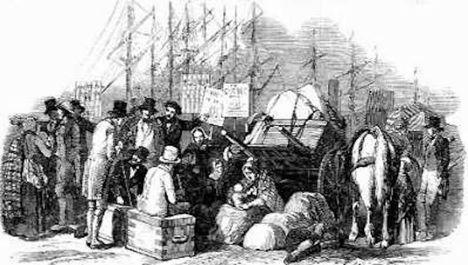 Refugees of Irish Famine to Get a Proper Burial
