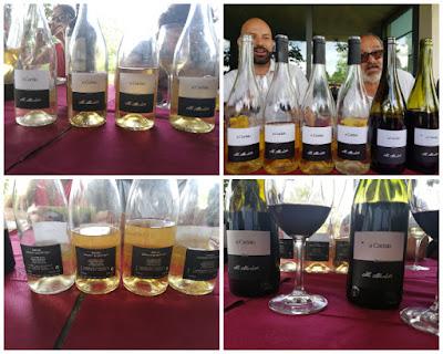 verticale vino a carisio caino maurizio menichetti
