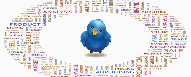 Twitter Marketing Tips To Gain Followers Mumbai INDIA