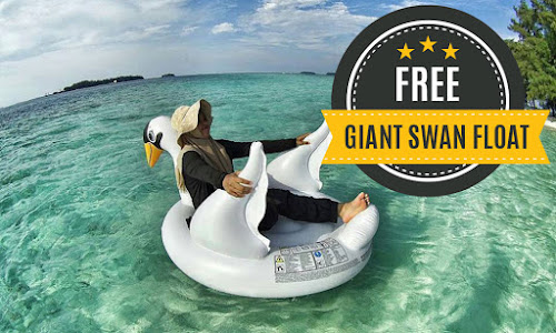 free giant swan float