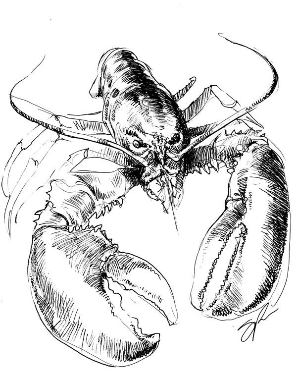 DRAWBRIDGE Rock Lobster B52s