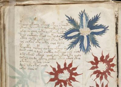 Curiosamente, molte delle piante raffigurate nel manoscritto non assomigliano a piante o fiori conosciuti.