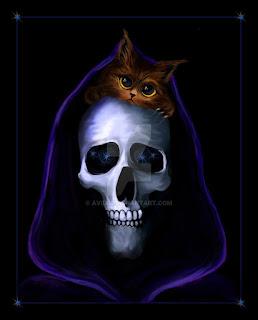 Koty w literaturze | Wiedźmowa głowologia