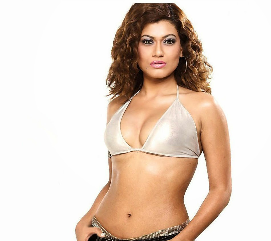 Payal Rohatgi Super Hot and Sexy Photos