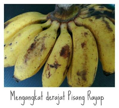 Mengangkat derajat pisang rayap. kumpulan  resep untuk pisang rayap