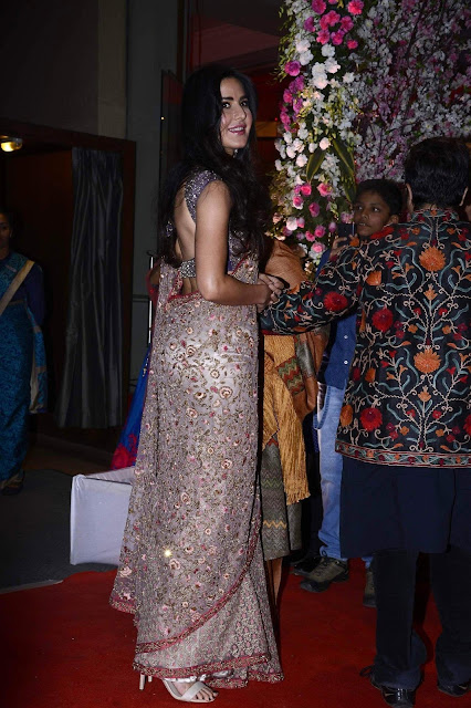 Katrina Kaif Looks Gorgeous In Saree At Neil Nitin Mukesh and Rukmini Sahay Wedding Reception