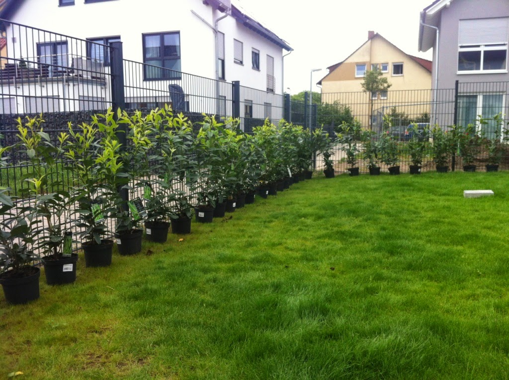 Abenteuer Hausbau Zaun Rund Ums Grundstuck