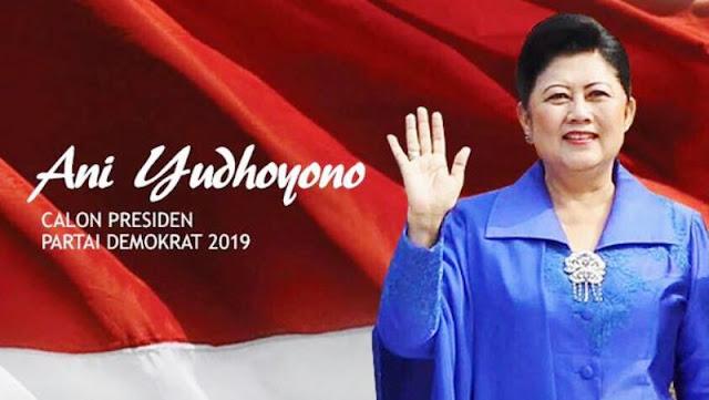 DEMOKRAT: Benar ANI YUDHOYONO Akan Maju Pilpres 2019