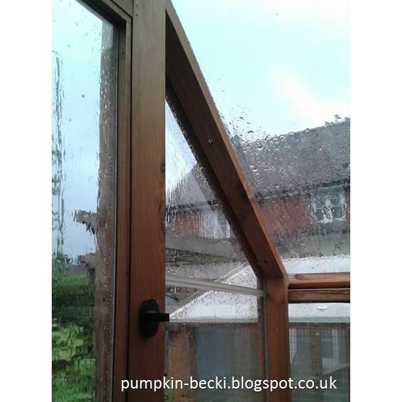 Rain Potting Shed windows