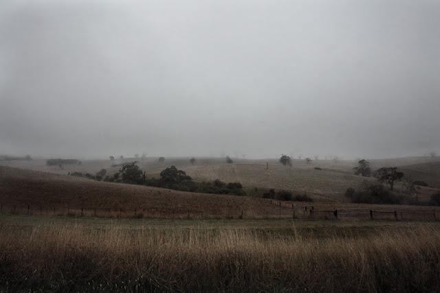 Greendale Mist
