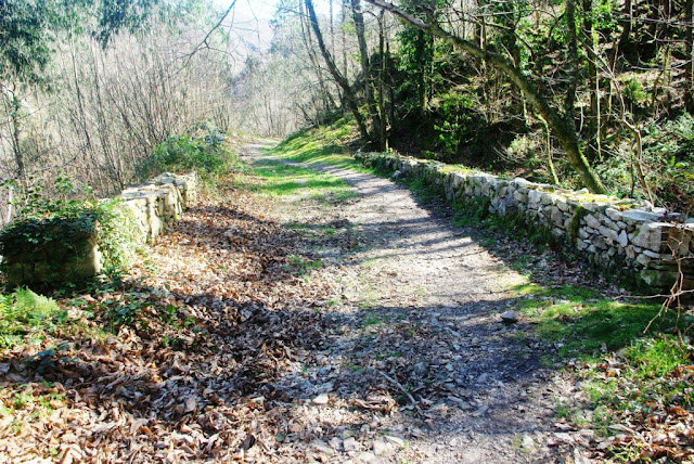 El camino a su paso por el puente de Borra, construcción de los siglos XVII-XVIII