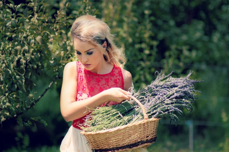 Woman Picking Lavender for My DIY Tranquility Bath Recipe Pixibay Image