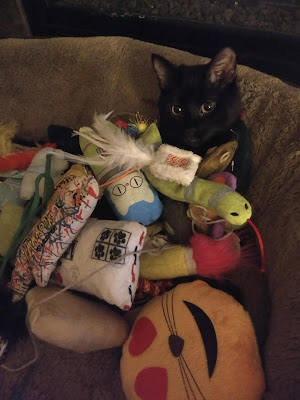 Enjoy These Pictures of Stuff Stacked on Cats