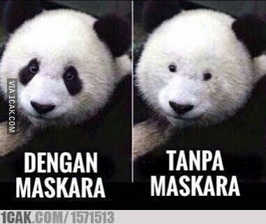 12 Meme 'Cewek Dandan' Ini Lucunya Bikin Ketawa Lepas
