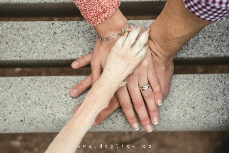 pata y manos