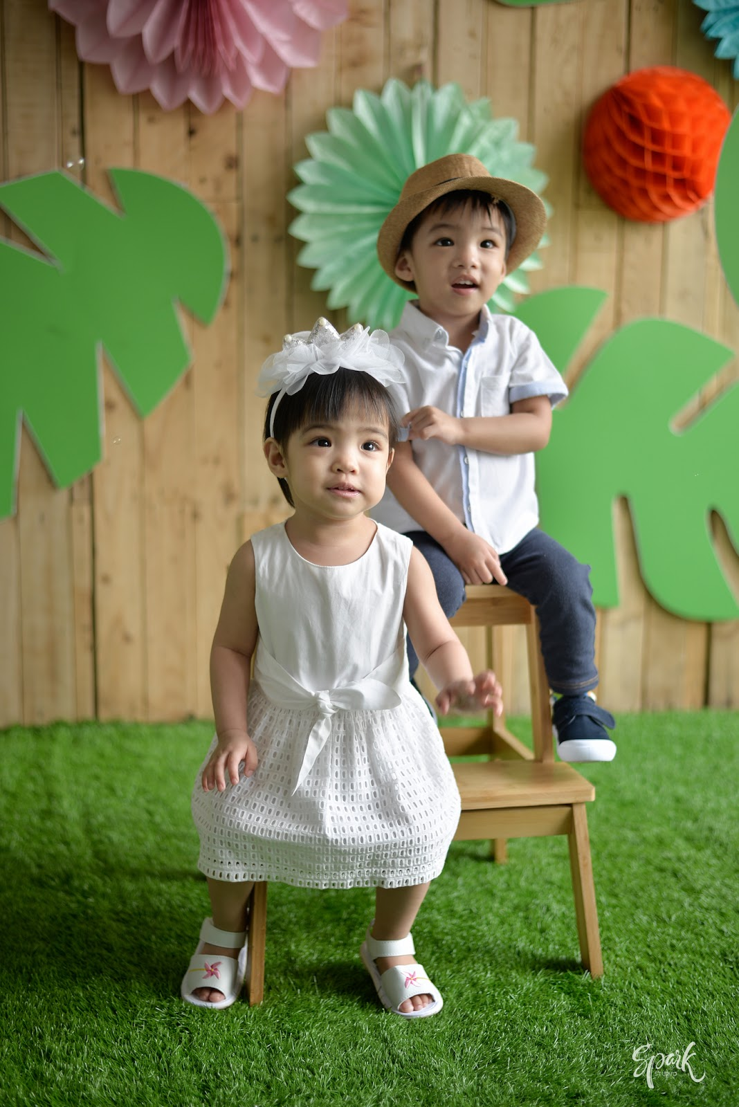 twins second birthday