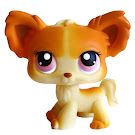 Littlest Pet Shop Portable Pets Chihuahua (#96) Pet