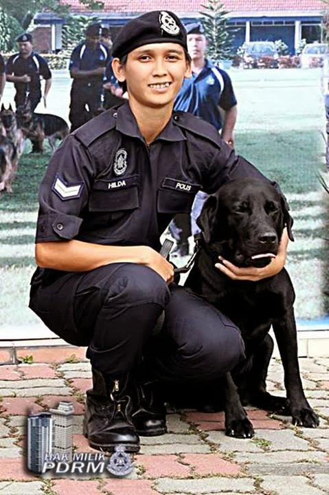 Image result for Gambar jurulatih anjing