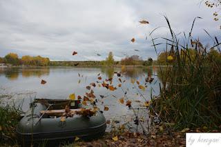 Herbst Karpfenangeln mit Boot am herbstlichen See