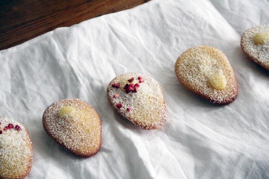 madeleines (mit lemon curd) I fräulein text