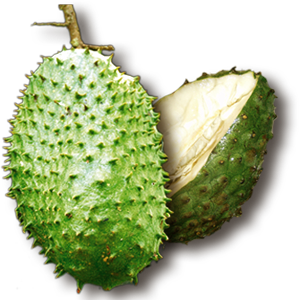 Uses and Effects of Soursop
