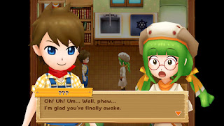 Download Harvest Moon Light of Hope PC