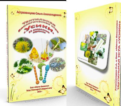 информационный продукт, игра, карточки, усики насекомых